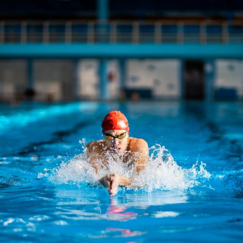 Swimmer swimming in the pool. Swimmer is having a training. Swimmer exercising